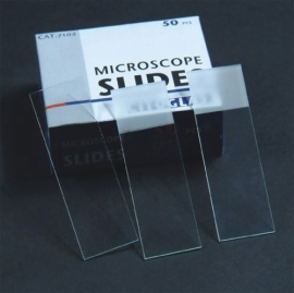 Microscope  Slides  2