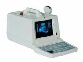 Whiteblack Ultrasound Diagnostic Devices